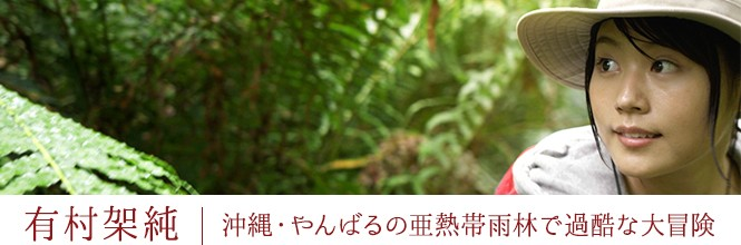 有村架純 沖縄・やんばるの亜熱帯雨林で過酷な大冒険