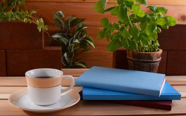 観葉植物とコーヒー