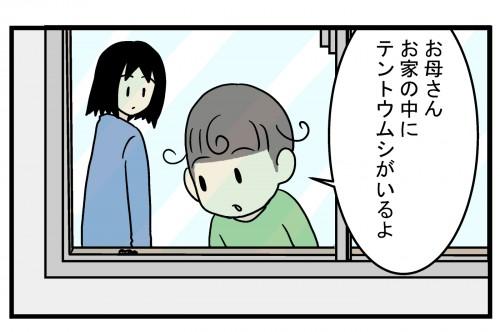 もう冬なのに…家の中に「テントウムシ」現れた驚きの理由とは!?【こどもと見つけた小さな発見日誌 Vol.34】