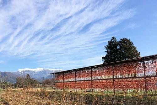 写真提供:山形県上山市