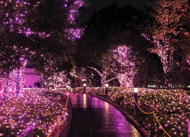 【『新宿テラスシティ イルミネーション'17-'18』】期間:2017年10月12日(木)〜2018年2月18日(日)/東京・新宿
