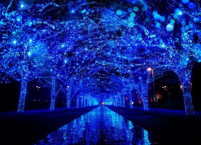 【『青の洞窟 SHIBUYA』】期間:2017年11月22日(水)〜12月31日(日)/東京・渋谷