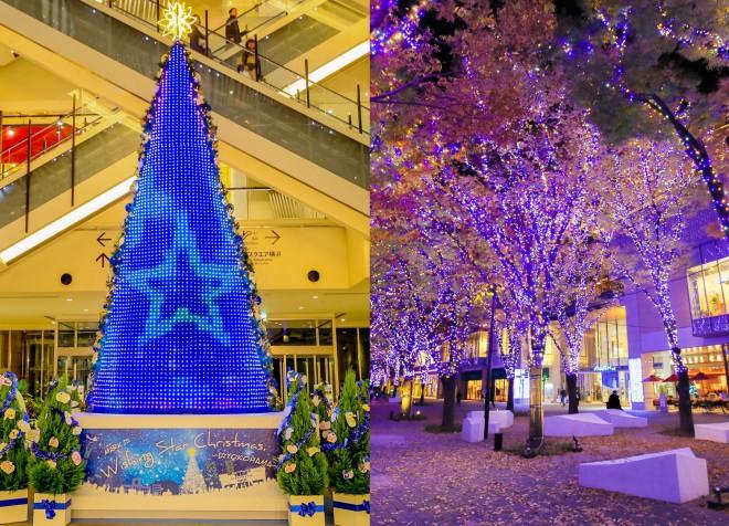 【MARK IS みなとみらい『Wishing Star Christmas Tree』】【 『グランモール公園 Bright Illumination 2017-2018』】期間:2017年11月7日(火)〜12月25日(月)/神奈川・横浜