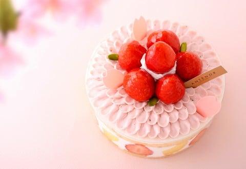 サムネイル 春はすぐそこ♪ ピンクがかわいい『桜スイーツ』まとめ
