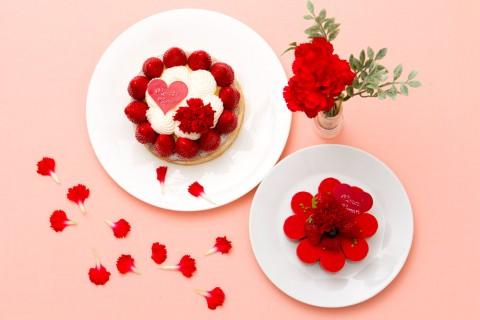 サムネイル 花それともケーキ? 今年はなにを贈る? おすすめ母の日ギフト2018