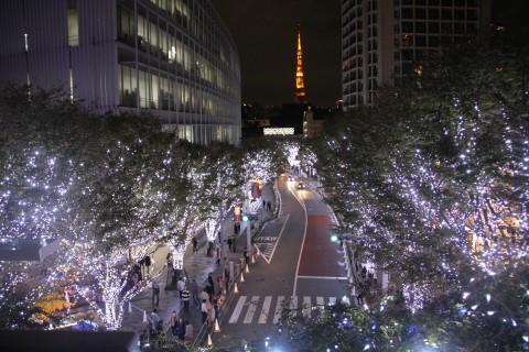 サムネイル 【2018−2019】関東のおすすめイルミネーションスポット