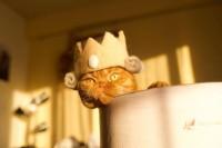王冠をかぶるムギ #抜け毛ロイヤルズ