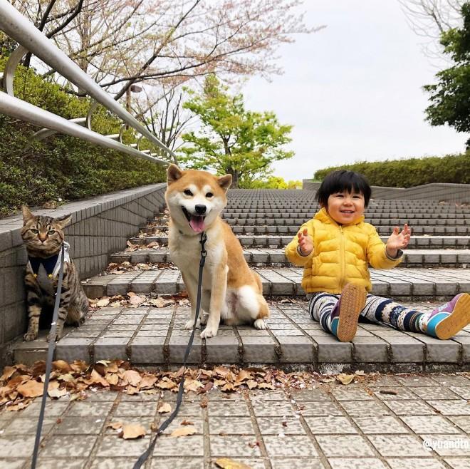 タータも入れて猫、犬、人間の仲良し兄弟
