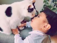 たいくんと愛猫の仲良しショット