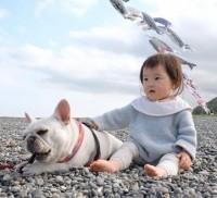 姉のムツキちゃん(ブルドッグ:3才)と、妹のアカリちゃん(ヒト:1才)の仲良しな日常