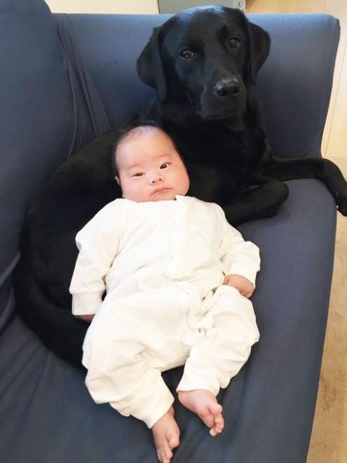 赤ちゃんに寄り添い、ドヤ顔をみせるクロエちゃん(画像提供:菜々さん)