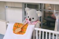 お布団をパンパンするコアラのお母さん(画像提供:KanaFettさん)