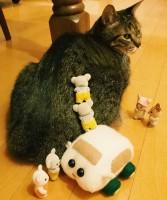 モルカーと協力して猫にバレないようによじ登るシルバニアの赤ちゃんたち(画像提供:エモりすさん)