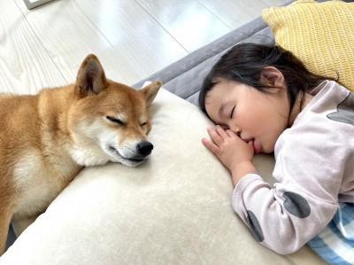 姉妹のように仲が良い犬の花子ちゃんと娘さん