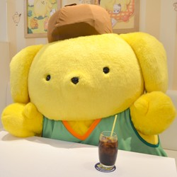 ポムポムプリンに直撃!〜スペシャルインタビュー〜