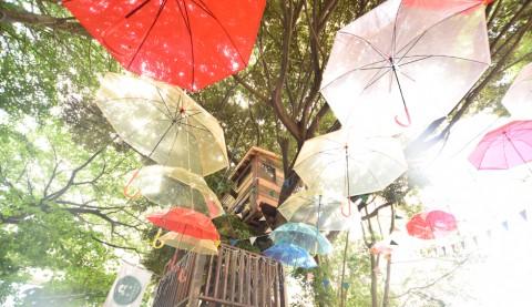梅雨を楽しむ お出かけスポット&イベント