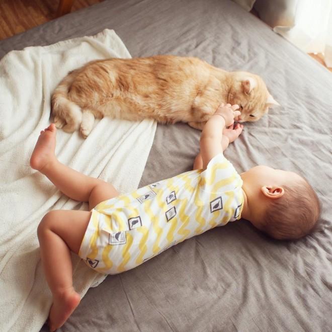 """サムネイル 人気猫""""ぷー""""と赤ちゃんの絆に反響、「すっかりお兄ちゃん」「癒される」の声"""