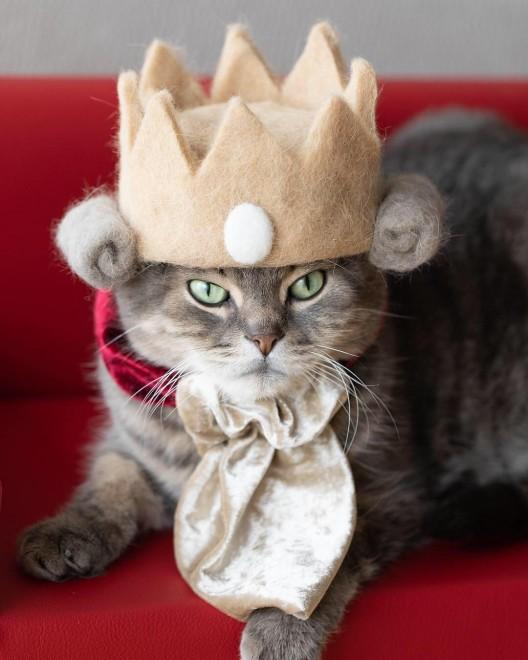 王冠やティアラは#抜け毛ロイヤルズのタグでおなじみ