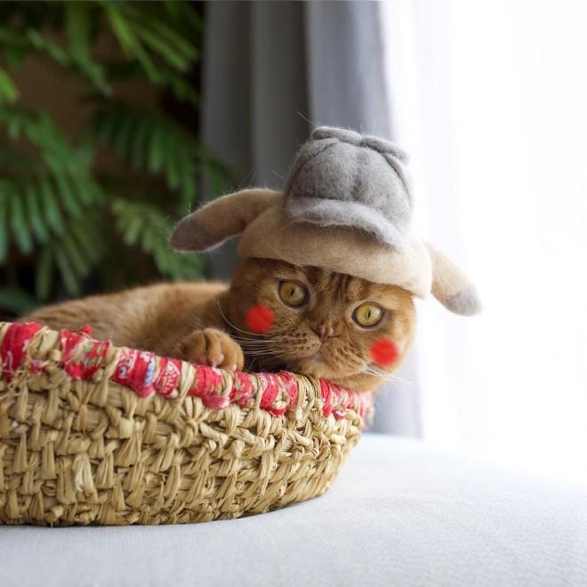 サムネイル ピカチュウにトランプ大統領、猫の抜け毛で作ったパロ帽子に反響「抜け毛貯金してます」