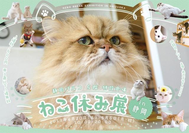 猫の合同真展&物販展『ねこ休み展 in静岡』