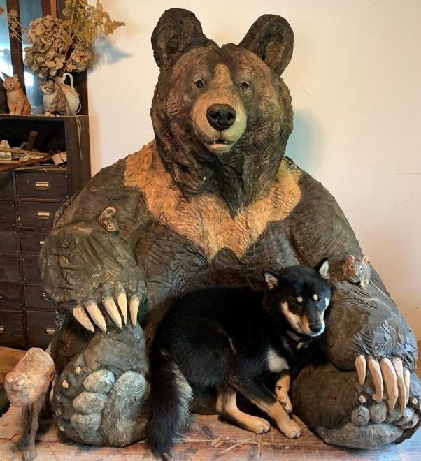 """サムネイル """"大きなクマの彫刻と共に育った犬""""がSNSで反響、「成長して体がはみ出ても、そこが居場所に」"""