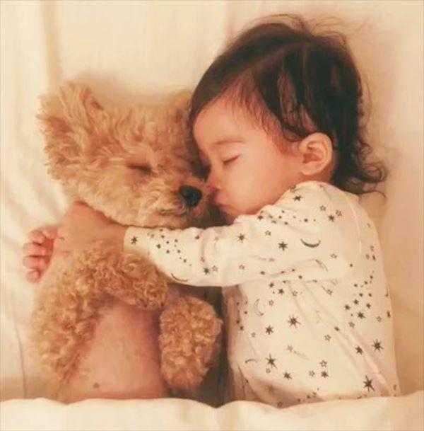 サムネイル トイプードルと女の子の添い寝動画が500万再生、一緒に成長することで育まれた優しさ