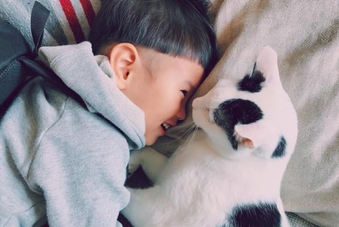 サムネイル ひとりっ子少年が愛猫失った悲しみ乗り越え、2年経った今も毎日伝える「ザクロ、今日もありがとう」